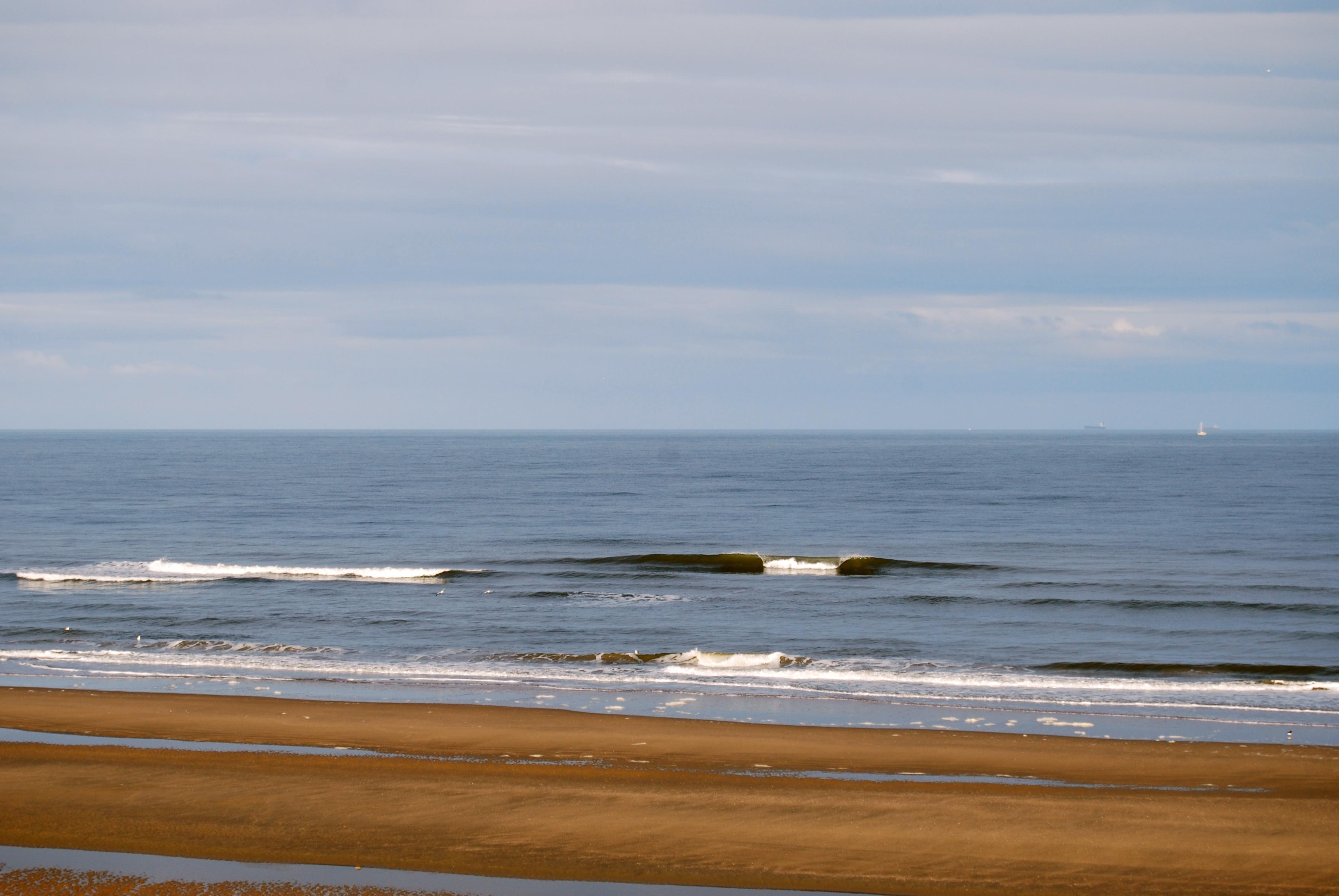 Parnassia surf 8 april