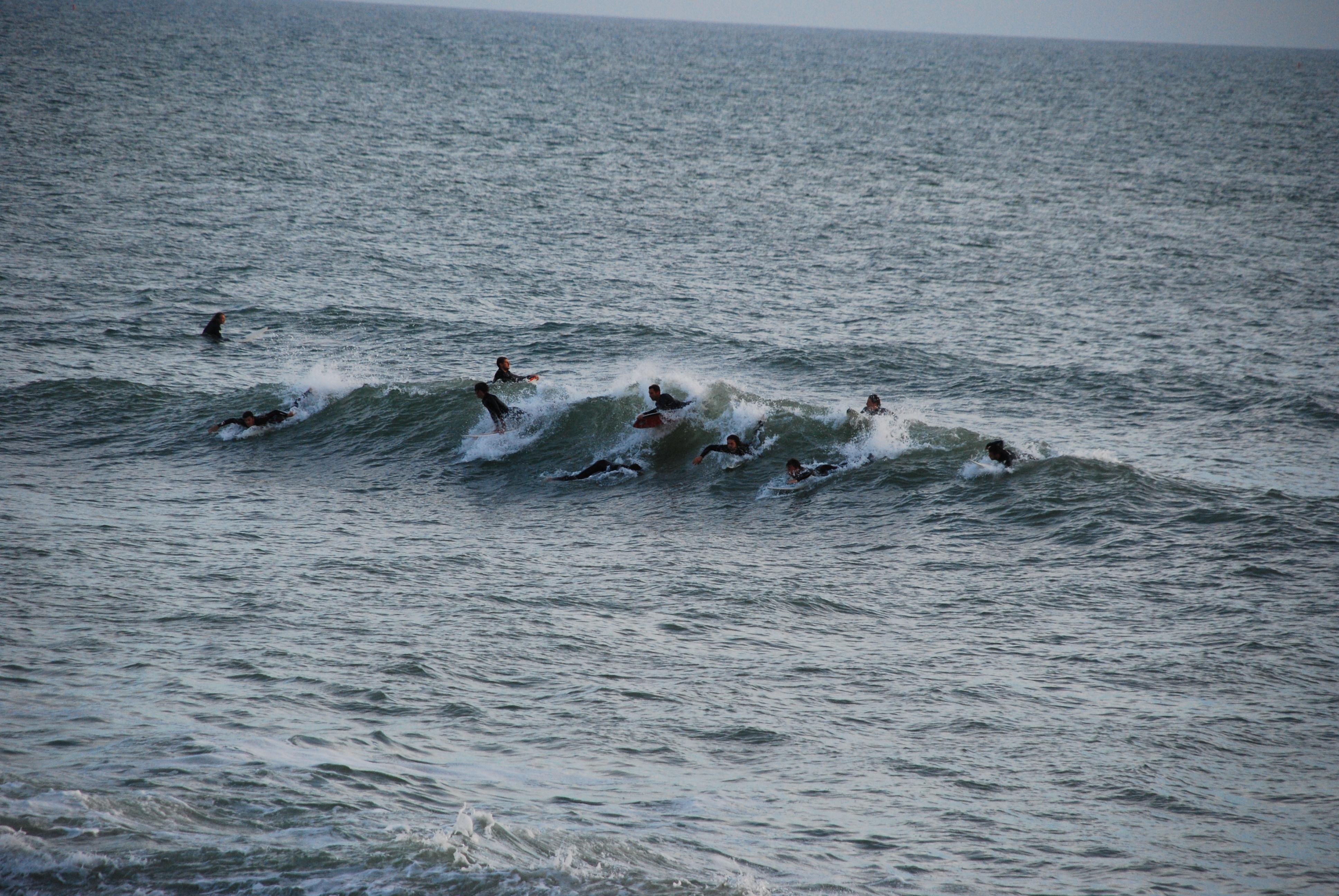 Veel surfers op golf