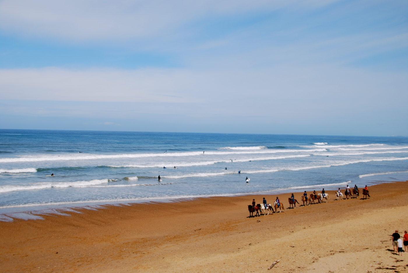 Sauveterre surf