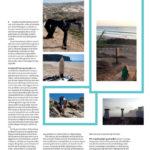 pagina 3 Volkskrant Surfen in Portugal.jpg