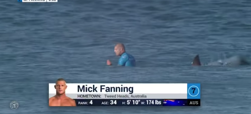 Mick Fanning aangevallen door haai