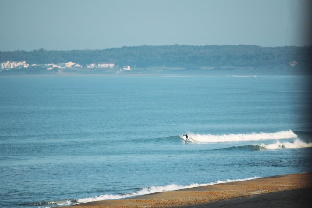 kleine golven la terriere