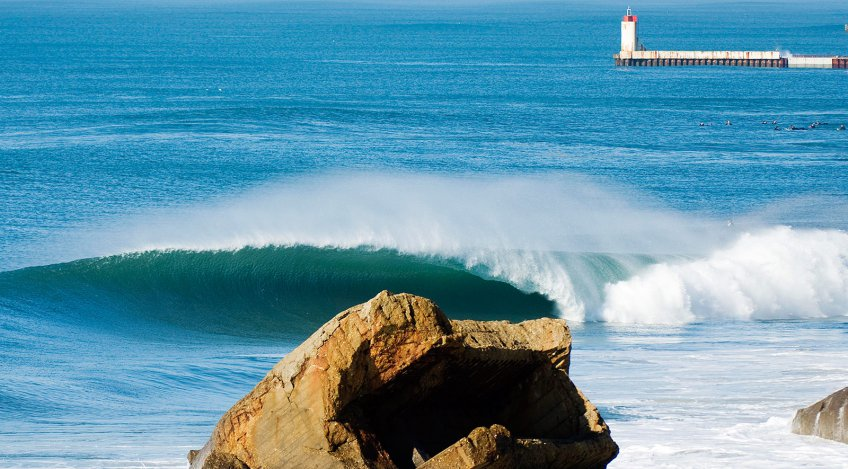 les landes in february