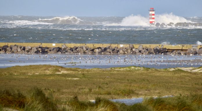 big waves holland