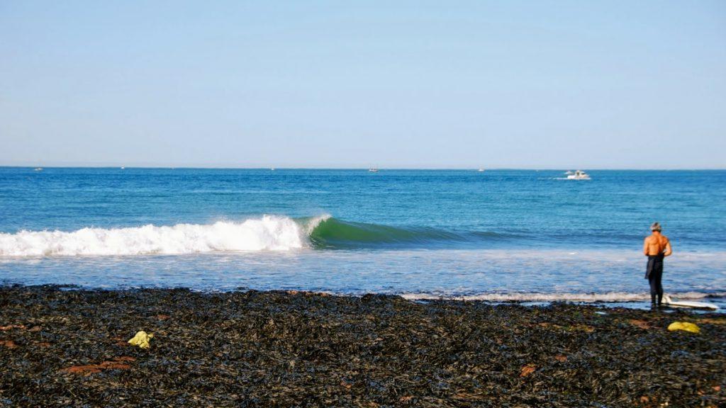yport surf