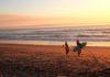 surfvakanties 1