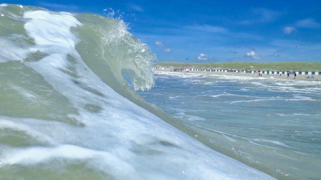surf texel