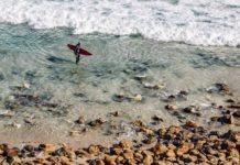 surfen te groot voor empathie