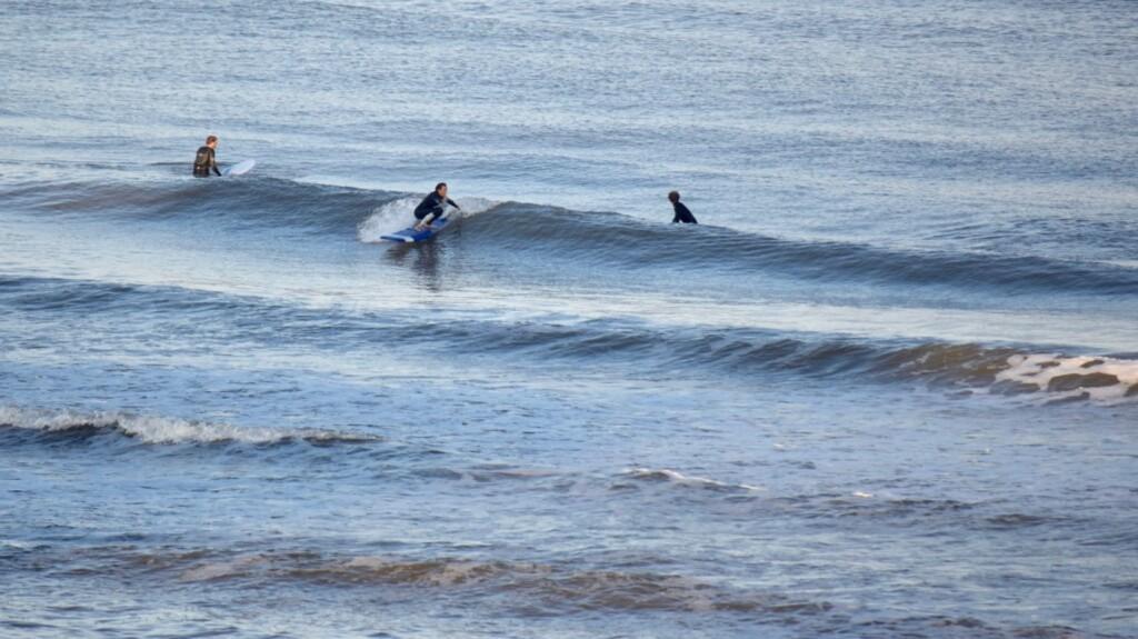surfweer september 2019