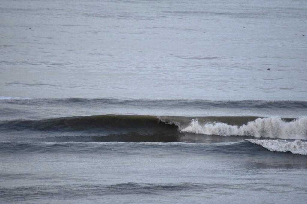 31 december 2020 surfen