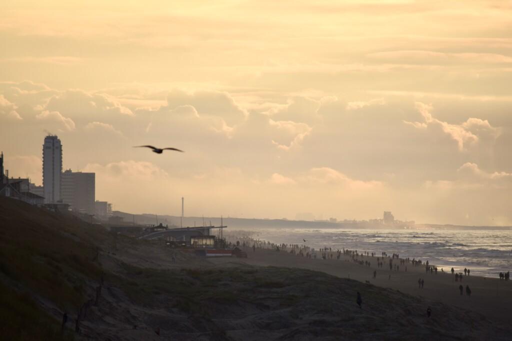 Zandvoort surfen