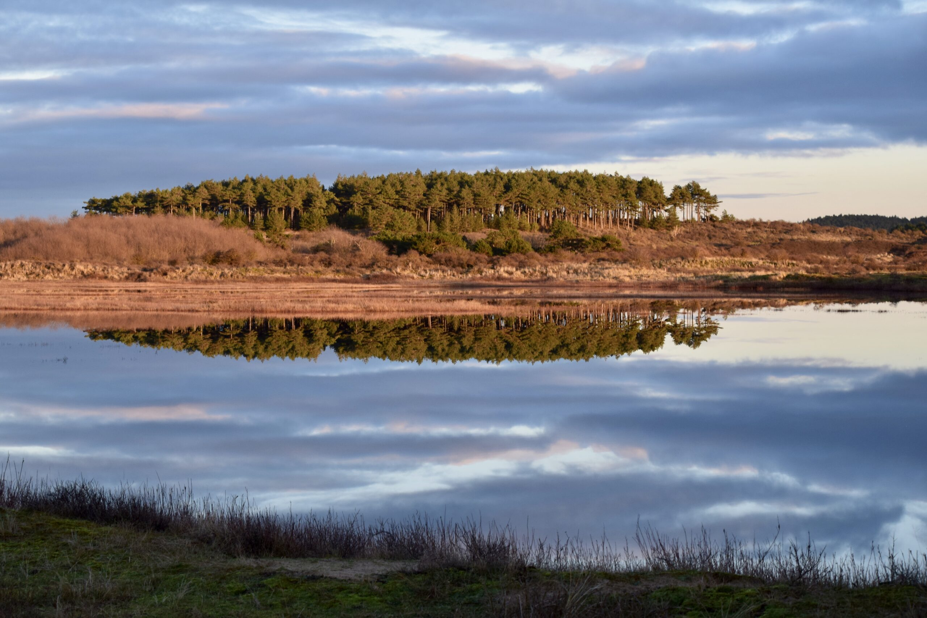 Nationaalpark Zuid Kennemerland