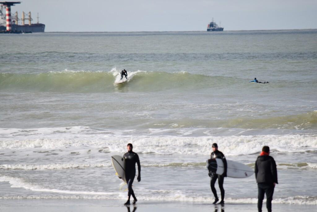 surfweer 23 januari 2021 hoek van holland surfen