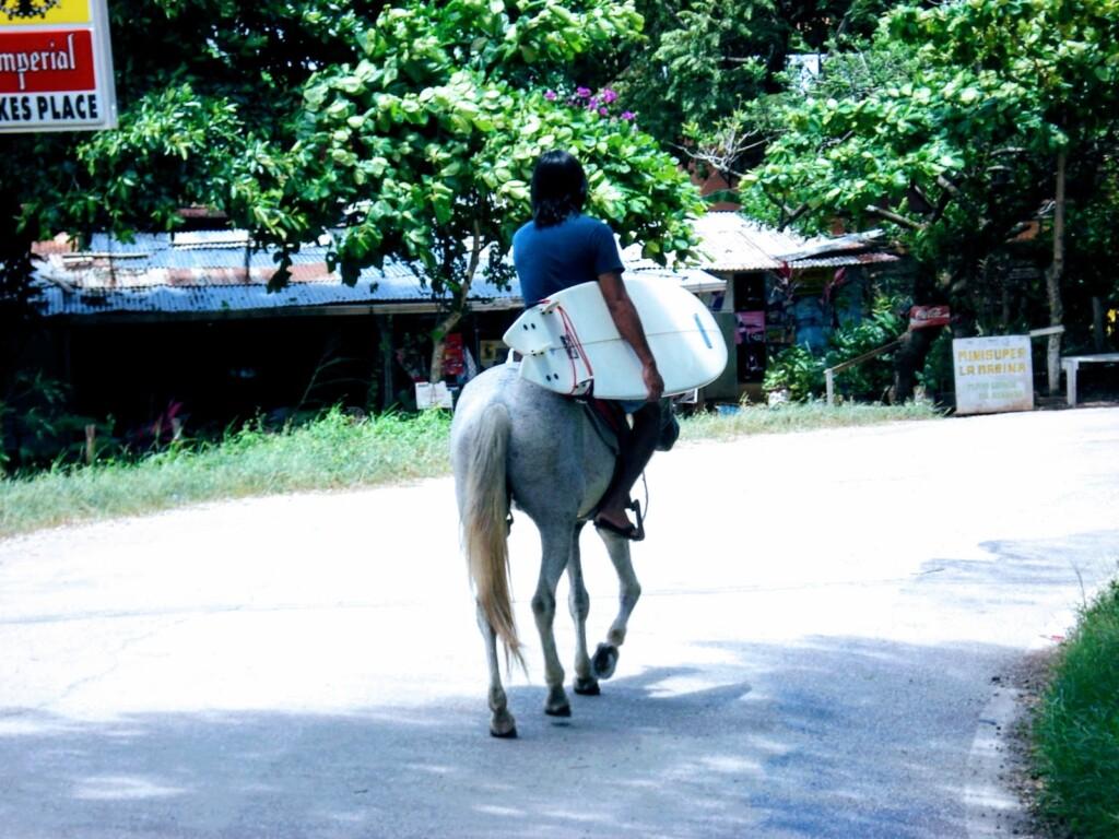 op het paard met surfboard